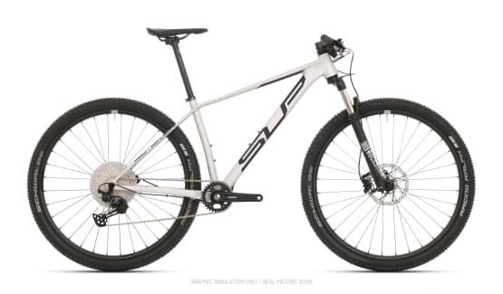 Horské kolo Superior XP 919 Matte Silver/Black 2021
